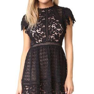 NWT Rebecca Taylor Lace Dress